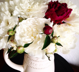 Stunning flowers tagged with #spiritualwhitespace by kindred Helen Gentz.