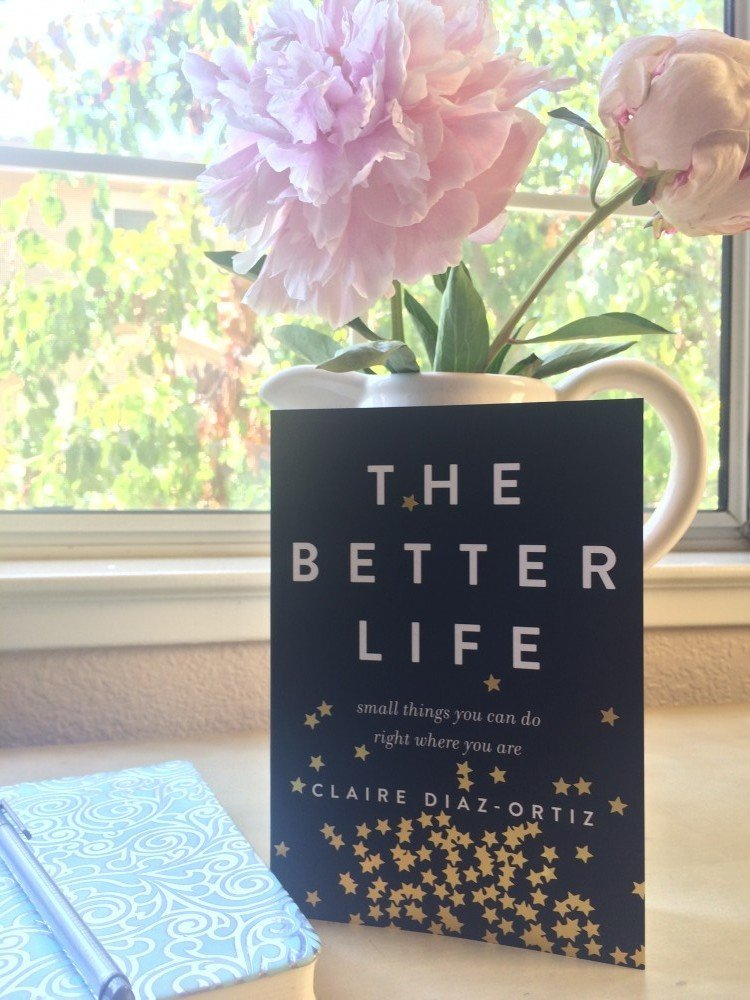 better life book - Claire Diaz-Ortiz