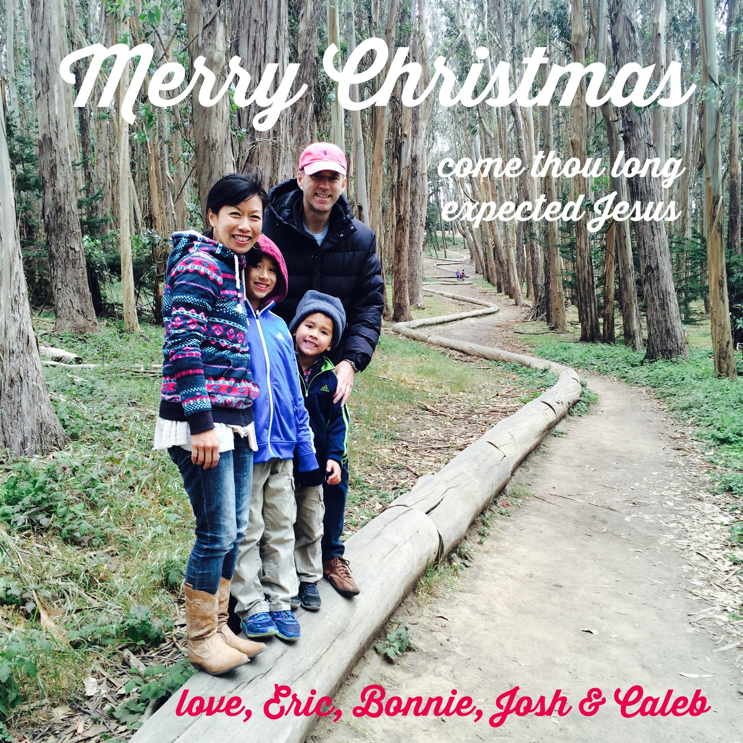 ChristmasGreeting_GrayFamily_2015