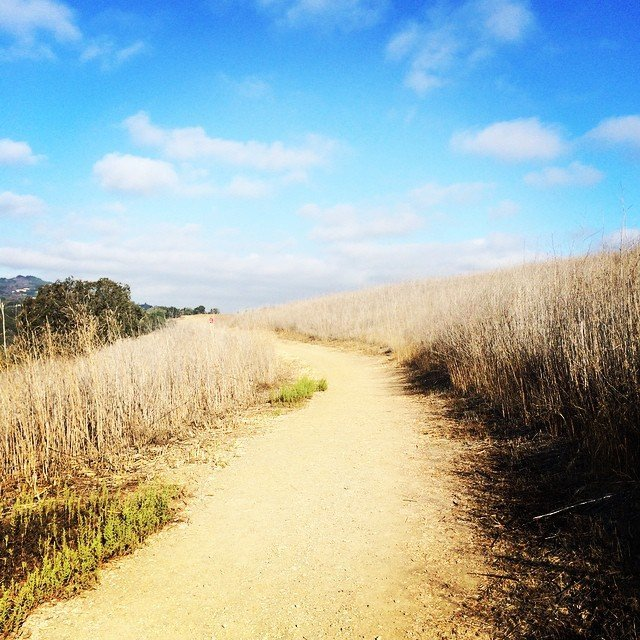 hikingpath_smallthings